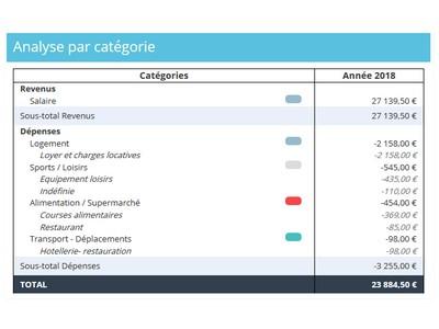 analyse des dépenses et revenus par catégories budgétaires